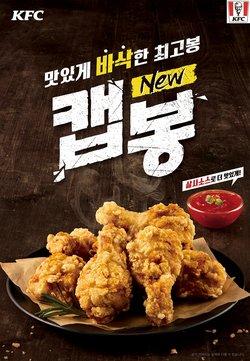 KFC  대구광역시 ( 오늘 게시 ) 의 카탈로그